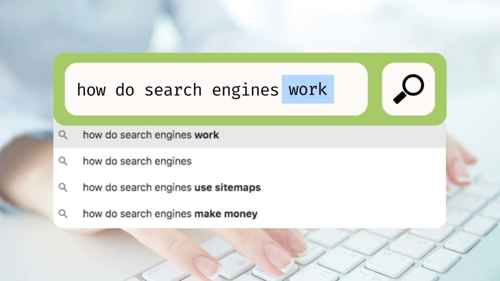 Search bar autocomplete